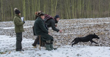 CACIT Field Trial 30.01.2015, Konopiste-Tschechien-22
