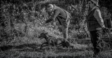 gundog_bad_aussee_2015_copyright_peter_weissboeck0038