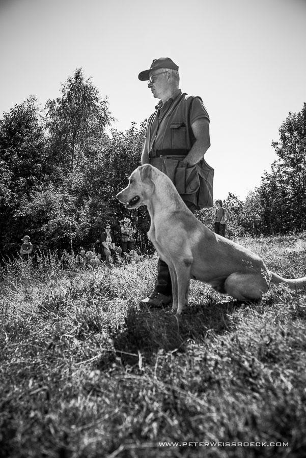 gundog_berschmeni_08.2015_copyright_peter_weissboeck0024