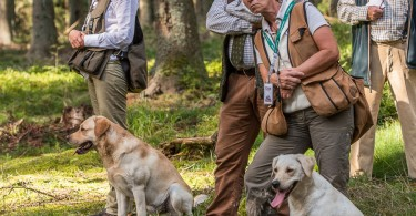 gundog_karlstift_2015_copyright_peter_weissboeck0009