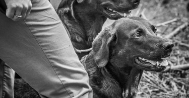 gundog_karlstift_2015_copyright_peter_weissboeck0011