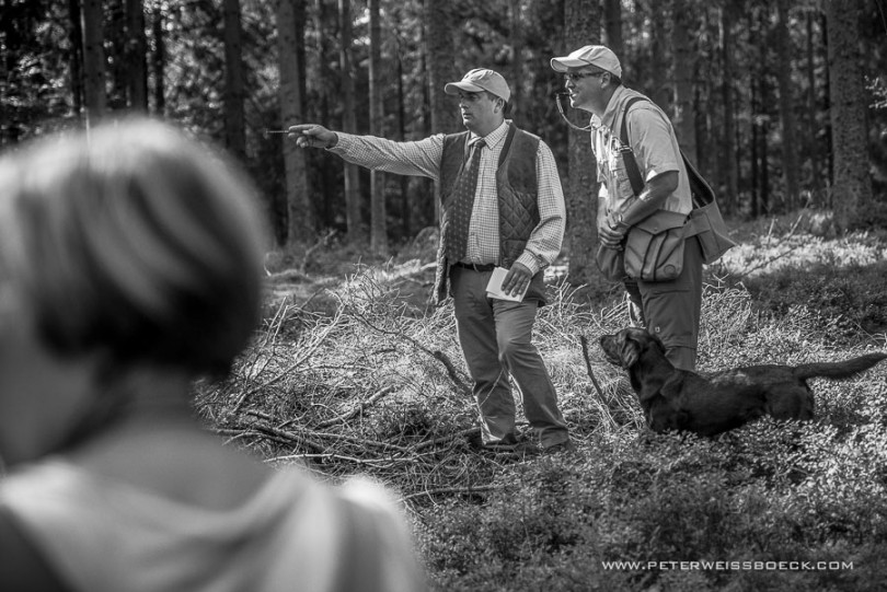 gundog_karlstift_2015_copyright_peter_weissboeck0034