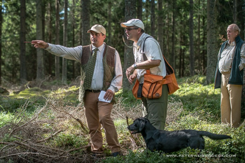 gundog_karlstift_2015_copyright_peter_weissboeck0035