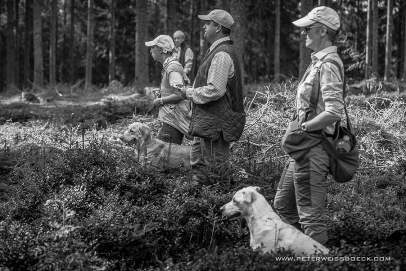 gundog_karlstift_2015_copyright_peter_weissboeck0038