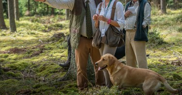 gundog_karlstift_2015_copyright_peter_weissboeck0073