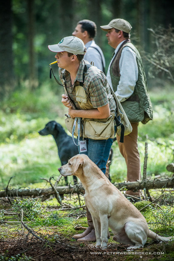 gundog_karlstift_2015_copyright_peter_weissboeck0097