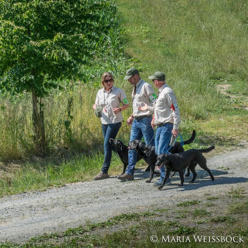 iwt2015konopiste_copyright-maria-weissboeck0025