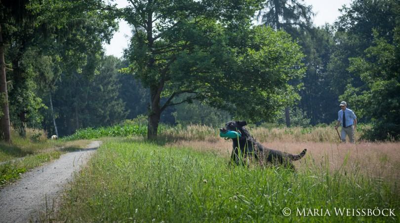 iwt2015konopiste_copyright-maria-weissboeck0065